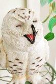 画像2: 輸入雑貨 ヒラリアス オウル Covent Garden コベントガーデン TS-05 フクロウ ふくろう 鳥 オブジェ 置物 癒し系 かわいい 幸運 風水 シャビーシック アンティーク風 (2)
