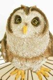 画像5: 輸入雑貨 ステア― オウル Covent Garden コベントガーデン TS-08 フクロウ ふくろう 鳥 オブジェ 置物 癒し系 かわいい シャビーシック アンティーク風 (5)